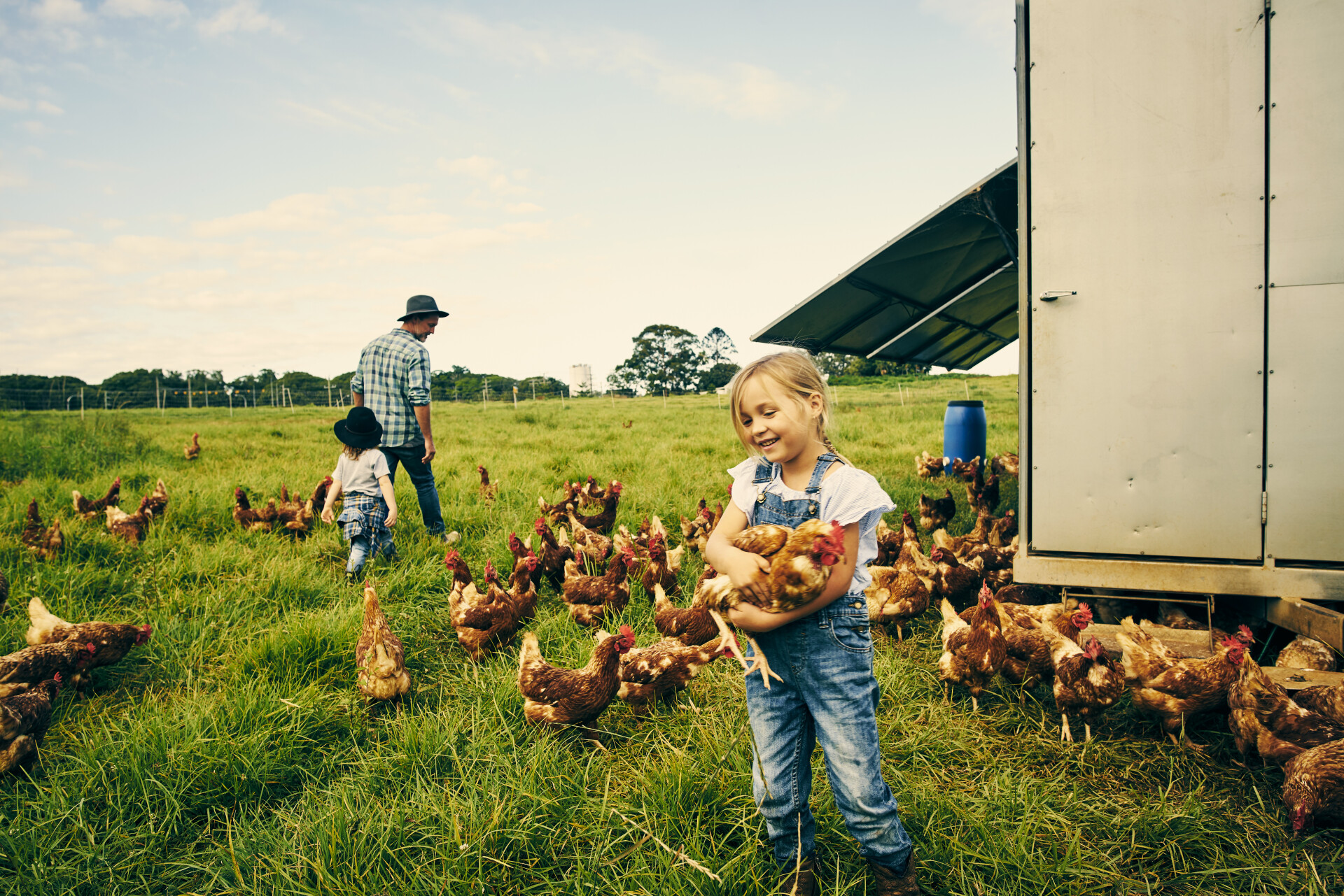 A young girl hugs a chicken while standing in a pasture surrounded by free range chickens